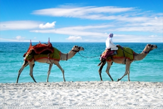 3 Nt Dubai & 7 Nt Seychelles inc Flights