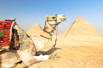 7nt Nile Cruise & 3nt Cairo inc Flights
