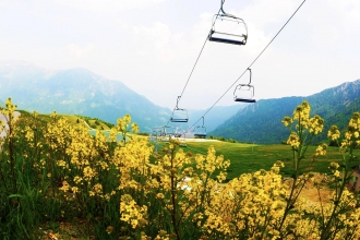 Italian Mountains, Spa, Half Board, Cheese & Wine Tasting & Flights