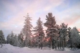 Luxury Finland Arctic Panorama Hut, Half Board, Private Sauna, Transfers & Flights!